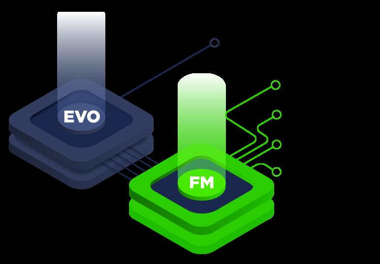 EVO: FX & IR derivatives + FM: Derivatives management, Debt management, Hedge accounting, Investment